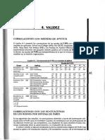 P-IPG-06-04-Validez