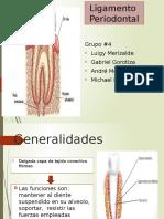 Ligamento Periodontal
