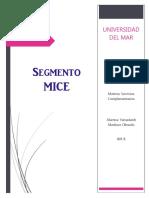El Segmento MICE (Servicios Complementarios)