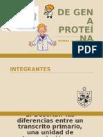 Expo de Gen a Proteína