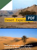 Desert Experience