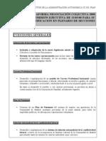 Borrador  Plataforma 08 EJECUTIVA 13-5[1]
