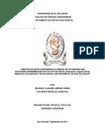Investigacion de Patogenos en Frijol - Salvador.pdf