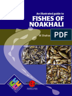 Fishes of Noakhali