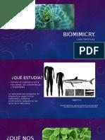 Bio Mimicry