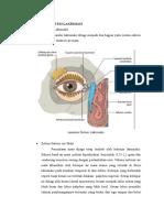 Fisiologi Sistem Lakrimasi-lap Ske Dua