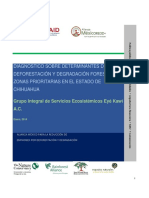 Diagnostico de Deforestacion Chihuahua