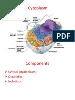 Cytoplasm(Author v.mazuru)