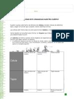 Articles-22964 Recurso Docx