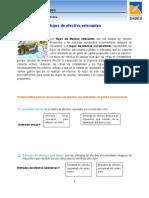 Flujo_de_efectivo.docx