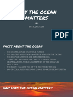 why the ocean matters