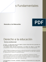 Derechos Fundamentales- Derecho a La Educación