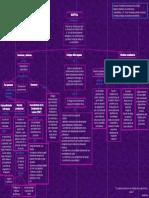 Mapa Conceptual de Bioetica