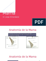 Radiologia de la Mama