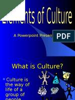 Culture Rubenstein Ch 3