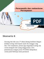 PBL 2 PPT