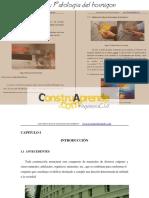Tesis Patologia Del Hormigon