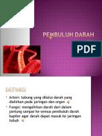 1. Pembuluh Darah Arteri
