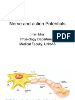 1. Nerve and Aksi Potensial