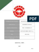 INFORME GEOLOGIA.doc
