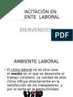 Capacitación en Ambiente Laboral