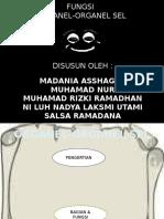 biologi organel