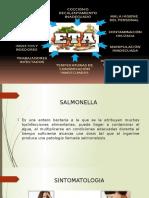 patogenos en los alimentos