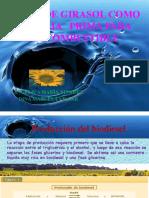 BIOCOMBUSTIBLE Aceite de Girasol