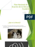 Plan Nacional de La Erradicación de La Silicosis Power Point (1)