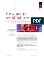 How Renal Failureputsthebreakonkidneyfunction
