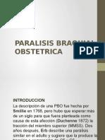 Alt. Des. Paralisis Braquial Obstetrica