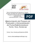 Sistematización Del Proyecto de Producción y Comercialización de Frutas Deshidratadas