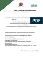 Informe Final Tamaulipas FZ002