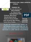Plan de marketing internacional Colombia geysha`s line