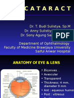 Cataract Lecturer