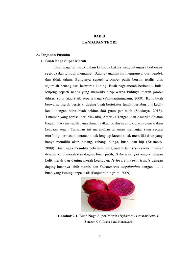 Tahapan pembuatan sari buah ccuart Image collections