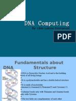 DNA Computing(19-04-2010)