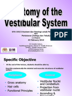 Lecture 1 (1) Anatomi of Vest System Gta