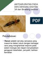 Gigitan Serangga Dan Binatang Buas