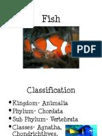 Fish.ppt