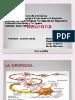 Neuro Expo