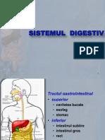 tubul digestiv I 2010