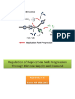 Regulation of Replication Fork Progression Through Histone Supply and Demand