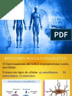 sistama musculo esqueletico