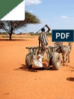 Kenya's Somali North East Devolution and Security