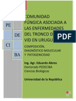 uy24-15312.pdf