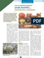 Espèces de Cucurbitacées Potagères (BS 247 Jan-fev 2016)