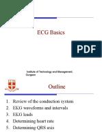 EcG Basics - Final