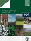 BOSQUES Y ENERGIA cuestiones clave
