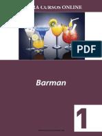 Barman 1 Gastronomia Bares - Curso Profissionalizante ef004dcb0b5d2